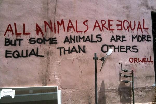 De la ferme des animaux